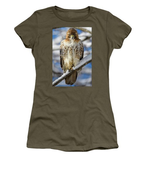 The Look, Red Tailed Hawk 1 Women's T-Shirt