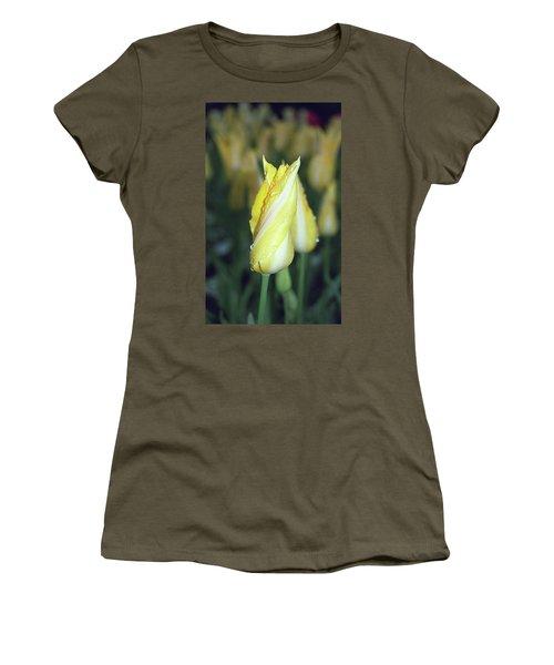 Twisted Yellow Tulip Women's T-Shirt