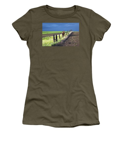 Two Horses In The Palouse Women's T-Shirt