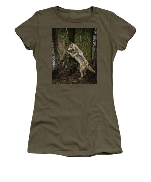 What's In There Women's T-Shirt