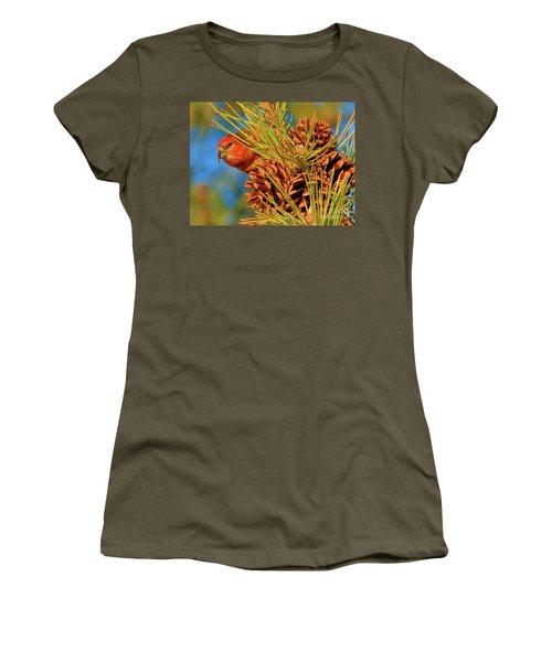 White-winged Crossbill Women's T-Shirt
