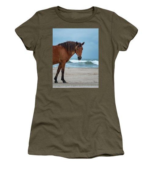 Wild Colonial Spanish Mustang Of Carova Stormy Skies Women's T-Shirt