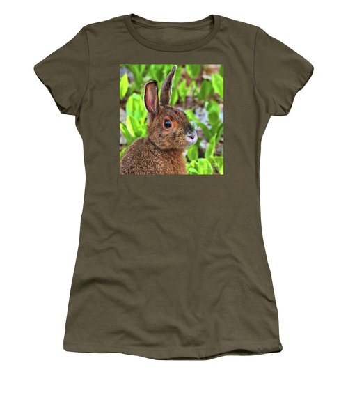 Women's T-Shirt featuring the photograph Wild Rabbit by Debbie Stahre