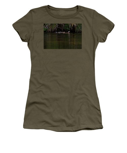 Wood Duck And Ducklings Women's T-Shirt