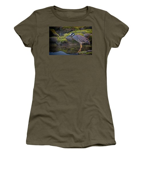 Yellow-crowned Night Heron Women's T-Shirt