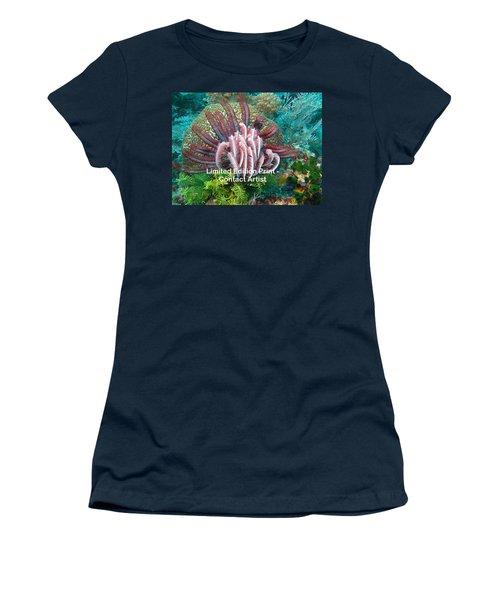 Komodo Island 6 Women's T-Shirt (Athletic Fit)