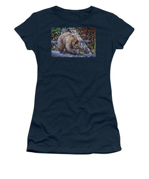 Women's T-Shirt (Junior Cut) featuring the photograph Lunch Break by Jim Thompson