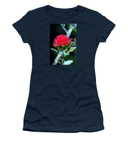 Red Ohia Lehua In Hawaii Volcano Mist Women's T-Shirt (Athletic Fit)
