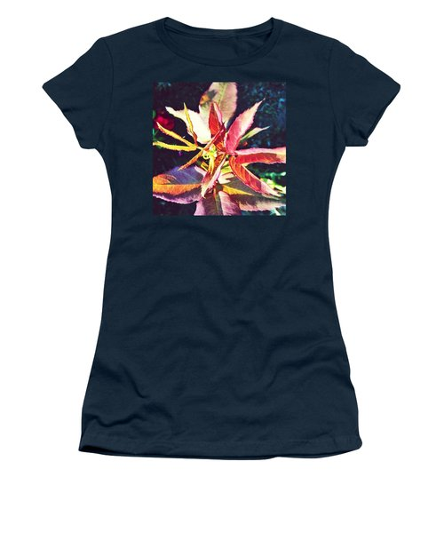 Rosy Glow - Rose Leaves Afternoon Light Women's T-Shirt (Athletic Fit)