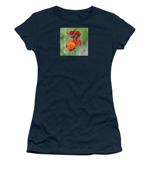 Smooth And Silky Women's T-Shirt (Junior Cut) by Chris Anderson