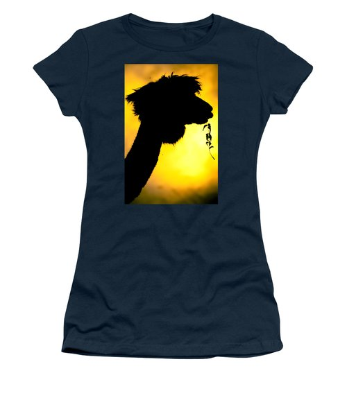 Women's T-Shirt (Junior Cut) featuring the photograph Endless Alpaca by TC Morgan