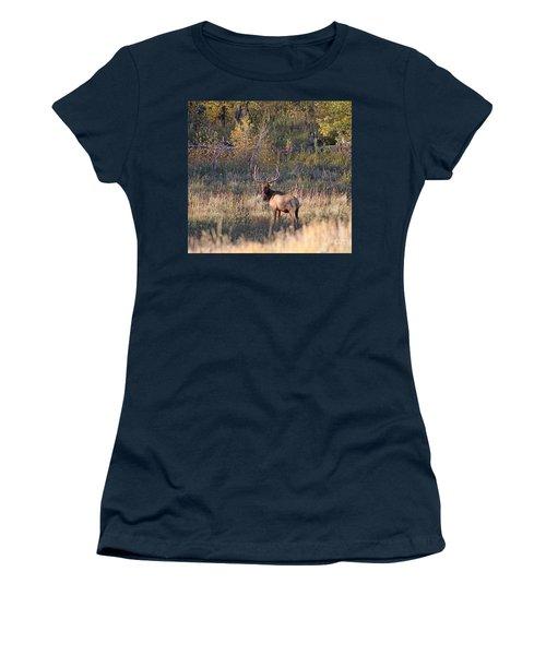 Fall Sunset Satellite Bull Elk Women's T-Shirt (Athletic Fit)
