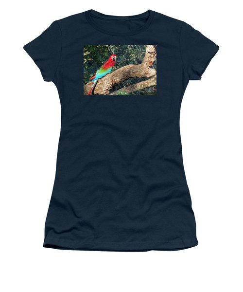 Macaw Resting Women's T-Shirt
