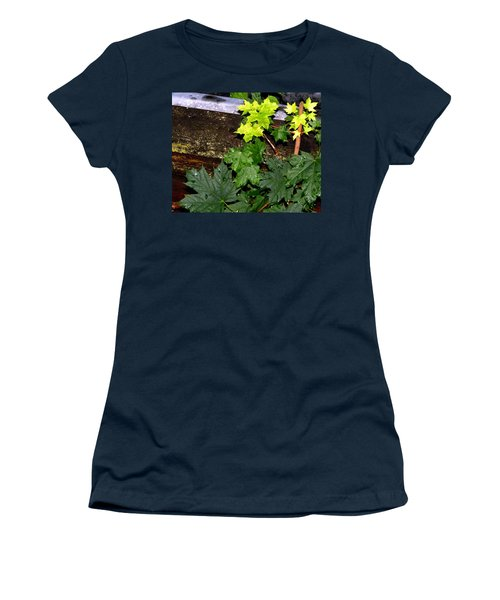 Women's T-Shirt (Athletic Fit) featuring the photograph Miniature Maple Leaves by Will Borden