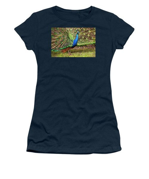 Peacock In Beacon Hill Park Women's T-Shirt