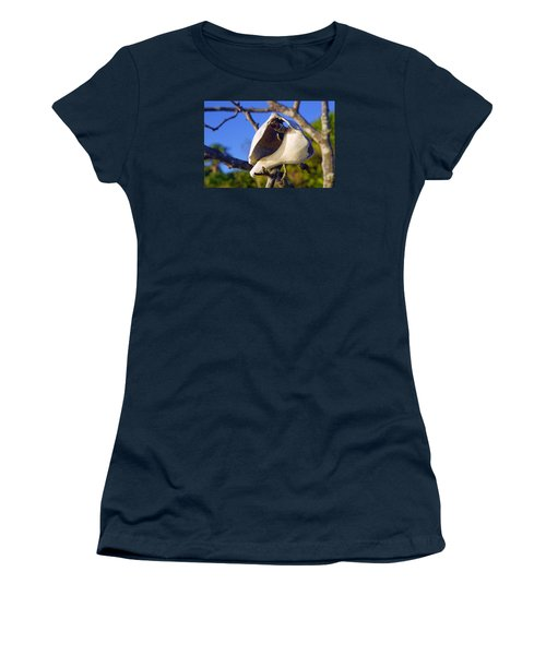 Shell On Brach Of Mangrove Tree At Barefoot Beach In Napes, Fl Women's T-Shirt