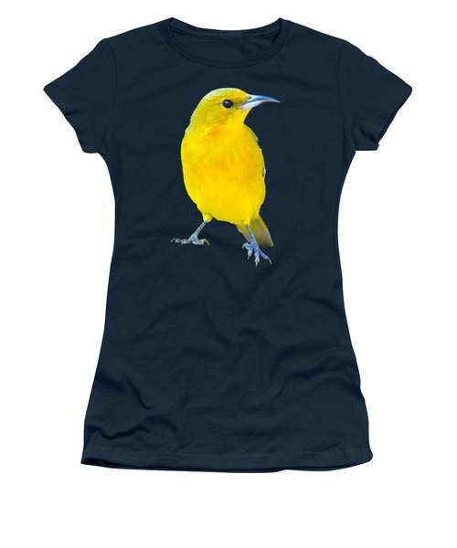 Silver And Gold Women's T-Shirt