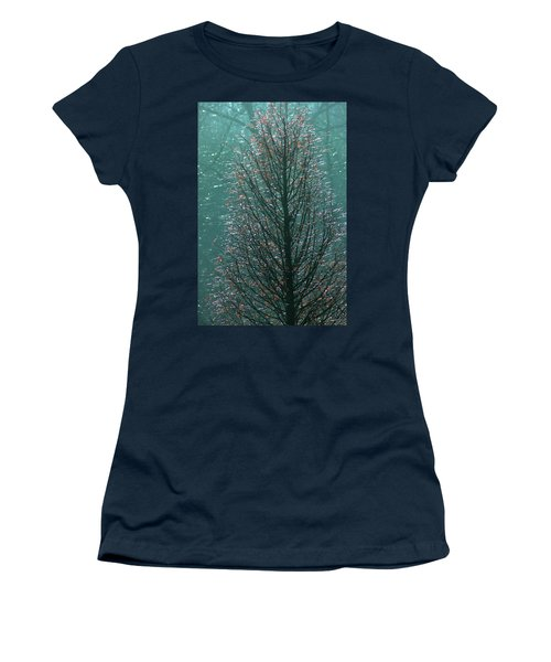Tree In Autumn, With Red Leaves, Blue Background, Sunny Day Women's T-Shirt