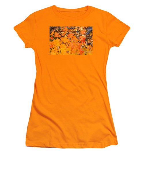 Women's T-Shirt (Athletic Fit) featuring the photograph After The Rain by Sue Smith