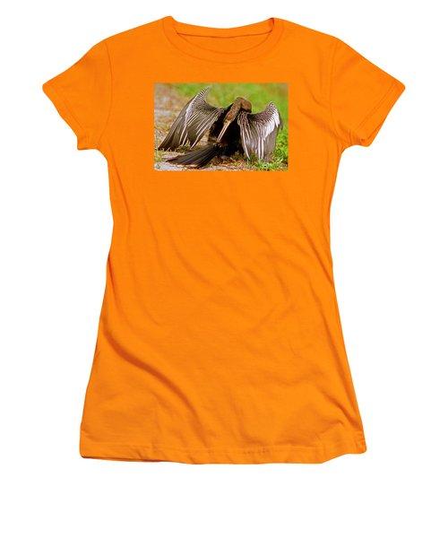 Anhinga Anhinga Anhinga Preening Women's T-Shirt (Junior Cut) by Millard H. Sharp