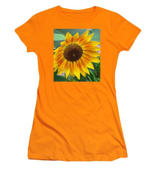 Women's T-Shirt (Junior Cut) featuring the photograph End Of Summer Sunflower by Barbara McDevitt