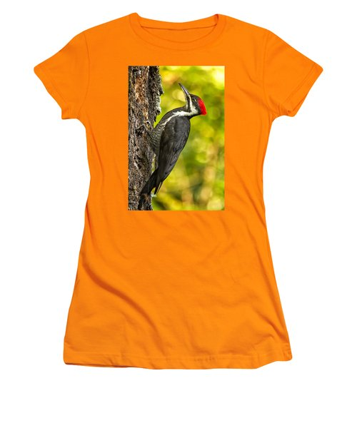 Female Pileated Woodpecker No. 2 Women's T-Shirt (Junior Cut) by Belinda Greb