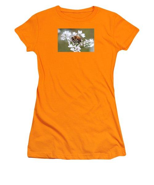 Honeybee On Cilantro Women's T-Shirt (Junior Cut) by Lucinda VanVleck