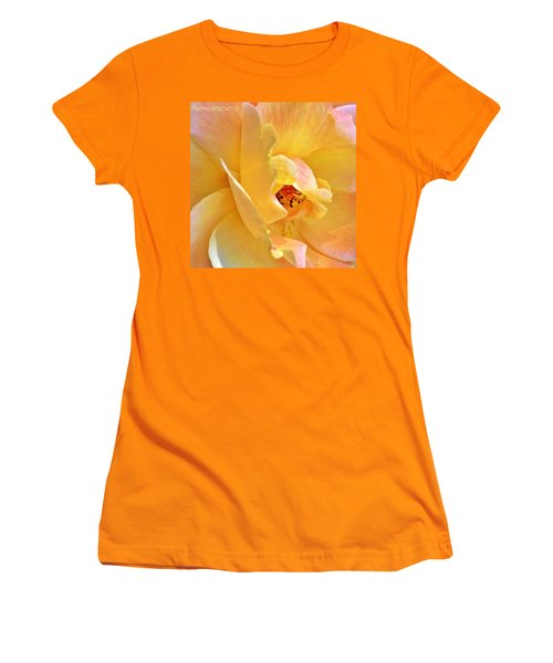 Lovely Yellow And Peach Rose Women's T-Shirt (Athletic Fit)