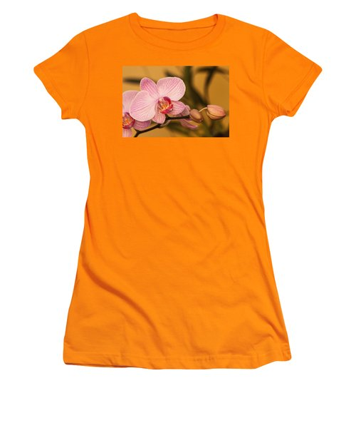 Moth Orchid Women's T-Shirt (Junior Cut) by Ed Gleichman