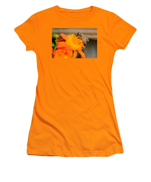 Women's T-Shirt (Junior Cut) featuring the photograph Carrying A Load by Debra Martz