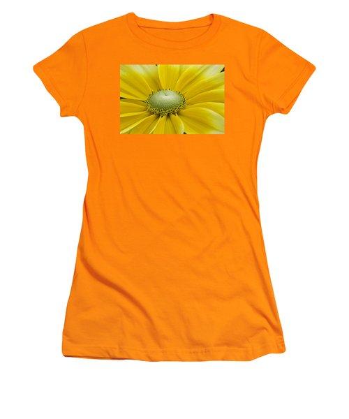 Prairie Sun Women's T-Shirt (Athletic Fit)