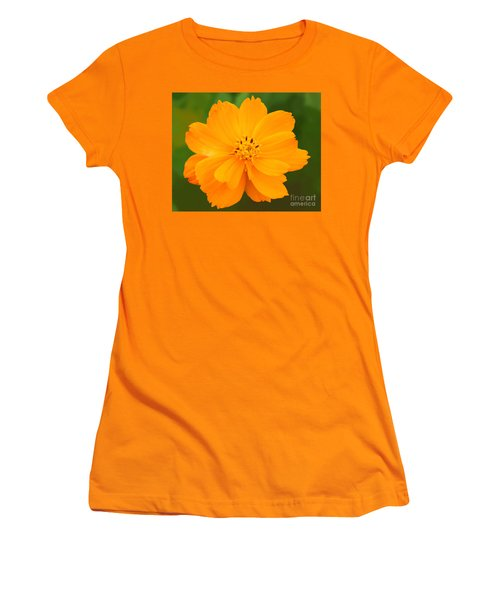Women's T-Shirt (Junior Cut) featuring the photograph Pretty In Orange by Mariarosa Rockefeller