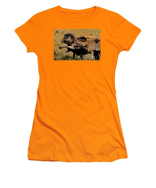 Women's T-Shirt (Junior Cut) featuring the photograph Rams At Half-time by Doc Braham