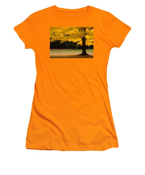 Tree Canopy Glowing In The Morning Sun Women's T-Shirt (Athletic Fit)