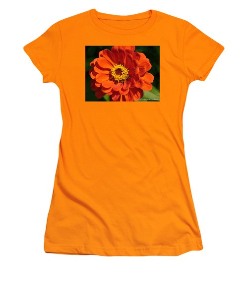 Women's T-Shirt (Junior Cut) featuring the photograph Sunny Delight by Lingfai Leung