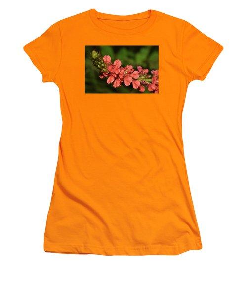 Creeping Indigo - Indigofera Spicata Women's T-Shirt (Athletic Fit)