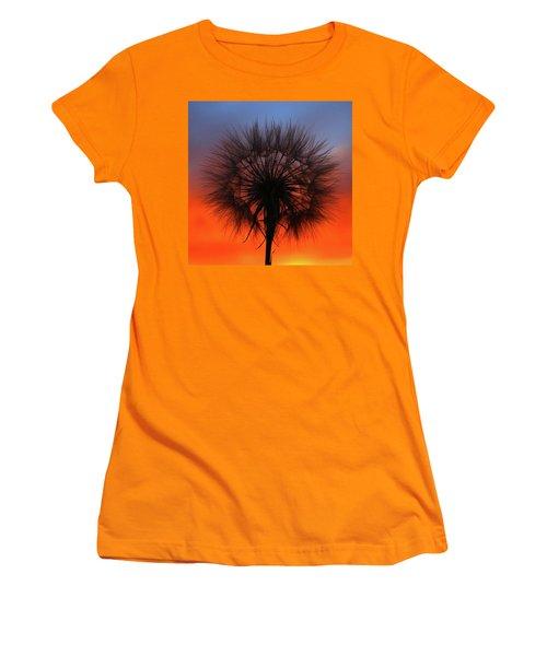 Dandelion Women's T-Shirt (Junior Cut) by Paul Marto
