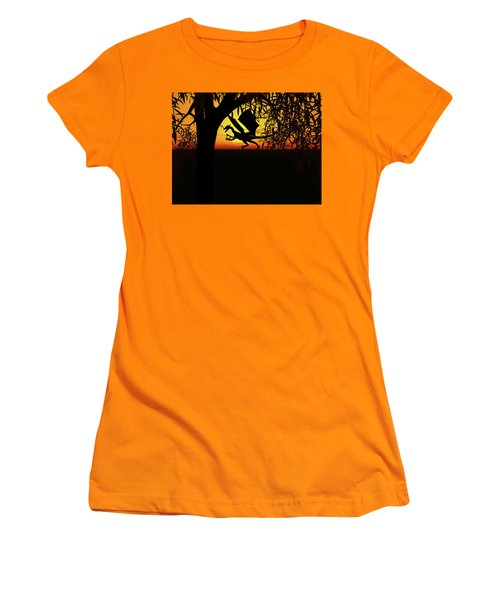 Lights And Shadow Women's T-Shirt (Junior Cut) by Michele Wilson