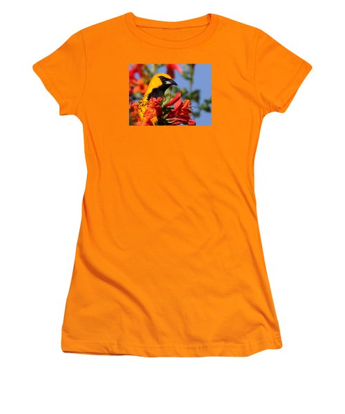 Spot Breasted Oriole Women's T-Shirt (Athletic Fit)