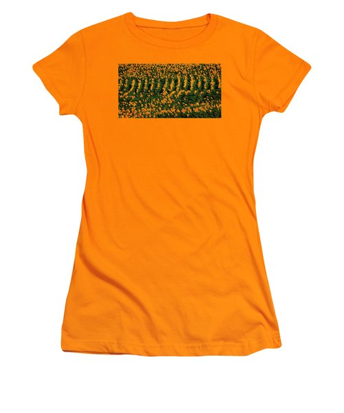 Women's T-Shirt (Junior Cut) featuring the photograph All In A Row by Chris Berry