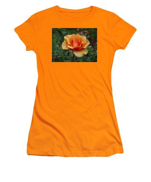 Apricot Rose Women's T-Shirt (Junior Cut) by Sadie Reneau