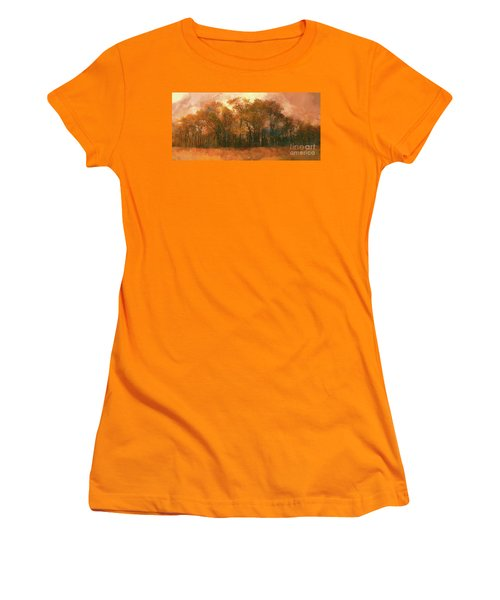 Women's T-Shirt (Junior Cut) featuring the photograph Artistic Fall Colors In The Blue Ridge Fx by Dan Carmichael