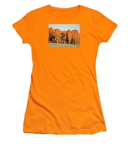 Aspen Forest In Autumn Women's T-Shirt (Junior Cut) by Deborah Moen
