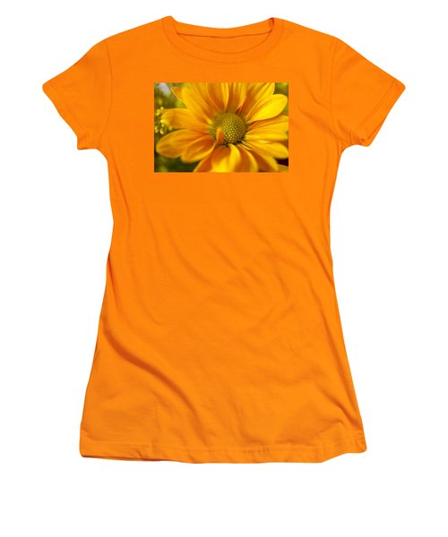 Aster Close Up Women's T-Shirt (Junior Cut) by Andrew Soundarajan