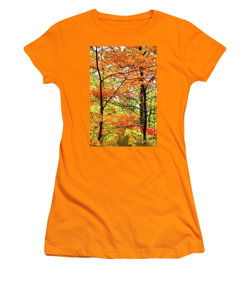 Autumn Splendor Fall Colors Leaves And Trees Ap Women's T-Shirt (Junior Cut) by Dan Carmichael