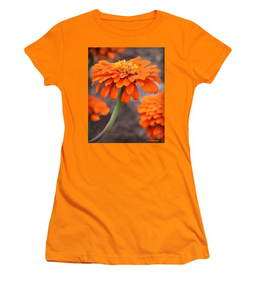 Bright And Beautiful Women's T-Shirt (Junior Cut) by Kathy M Krause