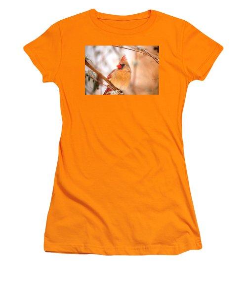 Women's T-Shirt (Junior Cut) featuring the photograph Cardinal Bird Female by Peggy Franz