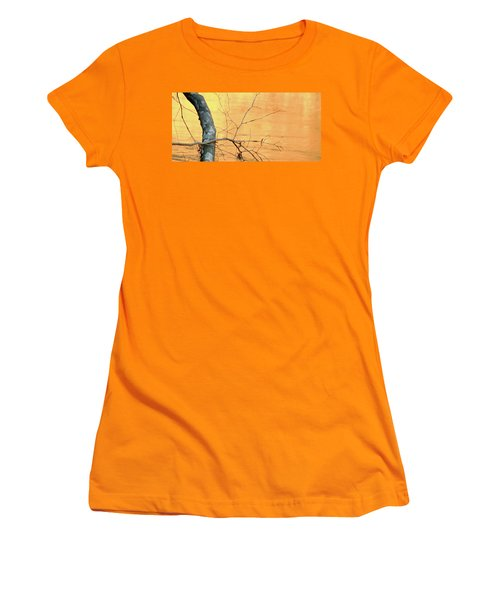 Women's T-Shirt (Junior Cut) featuring the photograph Chagrin River Gold by Bruce Patrick Smith