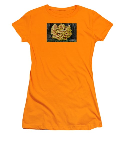 Women's T-Shirt (Junior Cut) featuring the photograph Chicken Of The Woods by Randy Bodkins