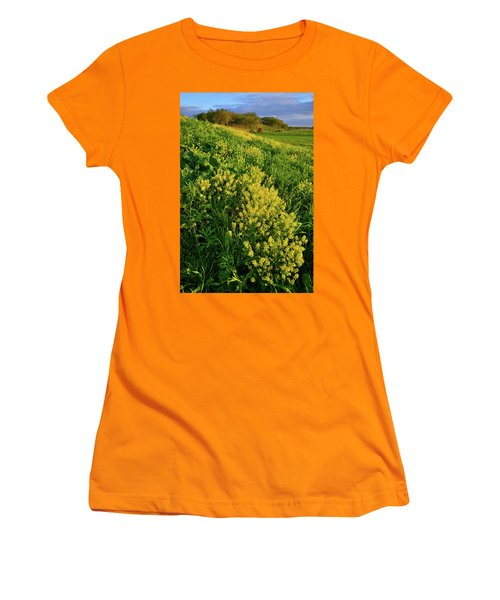 Evening At Glacial Park In Mchenry County Illinois Women's T-Shirt (Athletic Fit)